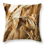 Corn On The Cob Throw Pillow