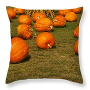 Corn Plants With Pumpkins In A Field Throw Pillow