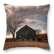 Corn Rows Throw Pillow
