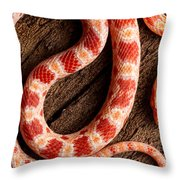 Corn Snake P. Guttatus On Tree Bark Throw Pillow