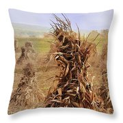 Corn Stalk Bales Throw Pillow by Marcia Colelli