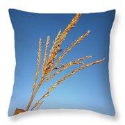 Corn Tassel Throw Pillow