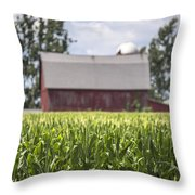 Corn With A Red Barn  Throw Pillow