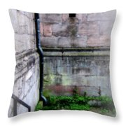 corner in Otterburg Throw Pillow