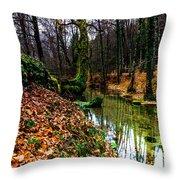 Corner Of Water Throw Pillow