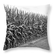 Cornfield Black And White Throw Pillow