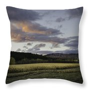 Cornfield Sunset Throw Pillow