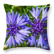 Cornflowers Growing In A Field Throw Pillow