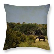 Corolla Pony Throw Pillow
