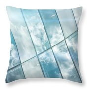 Corporate Flare Reflection Throw Pillow