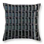 Corporate Reflection Throw Pillow