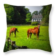 Corralled Horses - Featured In And Lets All Participate And Abc Groups Throw Pillow