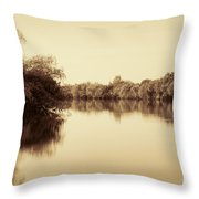 Corroboree Billabong In Sepia Throw Pillow