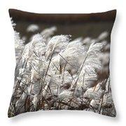 Cortaderia Selloana 2 Throw Pillow