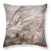 Cortaderia Selloana Throw Pillow