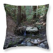 Corte Madera Creek On Mt. Tam In 2008 Throw Pillow