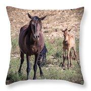 Cortez Colorado Mustangs Throw Pillow