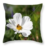 Cosmea And Bee Throw Pillow