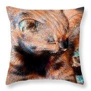 Cosmic Kitty 3 Throw Pillow