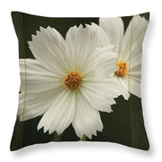 Cosmos And Hearts Throw Pillow