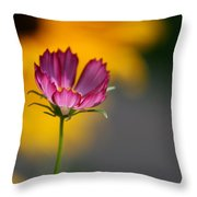 Cosmos And Suzies Throw Pillow