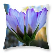 Cosmos Petals Up Throw Pillow