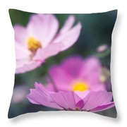 Cosmos Sensation - Fiori Rosa Throw Pillow