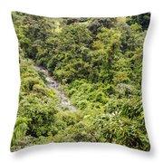 Costa Rica Zip Line View Throw Pillow