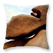 Cote De Granite Rose Throw Pillow