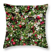 Cotoneaster Bush Background Throw Pillow