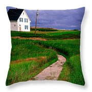 Cottage Among The Dunes Throw Pillow by Edward Fielding
