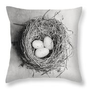 Cottage Bird's Nest In Black And White Throw Pillow