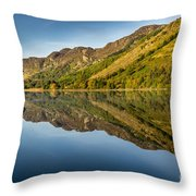 Cottage By The Lake Throw Pillow