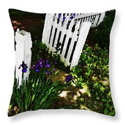 Cottage Entry  Throw Pillow