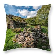 Cottage Ruin Throw Pillow by Adrian Evans