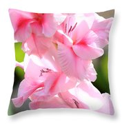 Cotton Candy Gladiolus Throw Pillow