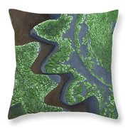 Cotton Gin Gears Throw Pillow
