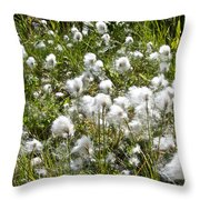 Cotton Grass On Homestead Trail In Homer-ak- Throw Pillow