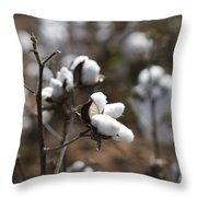 Cotton Southern Gold Throw Pillow