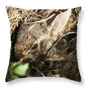 Cottontail Kits Throw Pillow