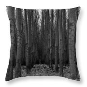 Cottonwood Alley Monochrome Throw Pillow