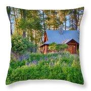Cottonwood Cottage Spring 2014 Photographs Taken By Omaste Witko Throw Pillow
