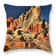 Cottonwood Narrows Side Show Throw Pillow
