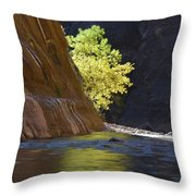 Cottonwood On The Virgin River Throw Pillow