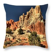 Cottonwood Rainbows Throw Pillow