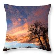 Cottonwood Sky Throw Pillow