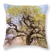 Cottonwood Tree Digital Painting Throw Pillow