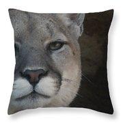 Cougar Digitally Enhanced Throw Pillow