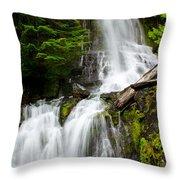 Cougar Falls Throw Pillow