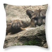 Cougar Spotted Me Throw Pillow
